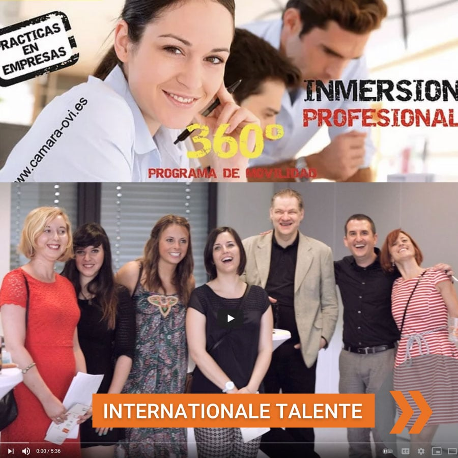 WhyConsult-Internationale-Talente